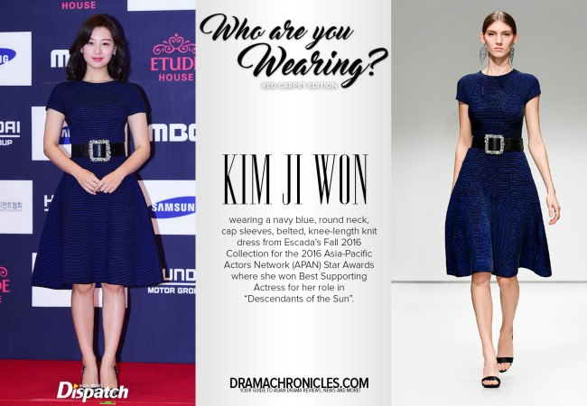 Kim Ji Won the 2016 APAN Star Awards photo c/o Dispatch | Model photo c/o Vogue from Escada's Fall 2016 Collection